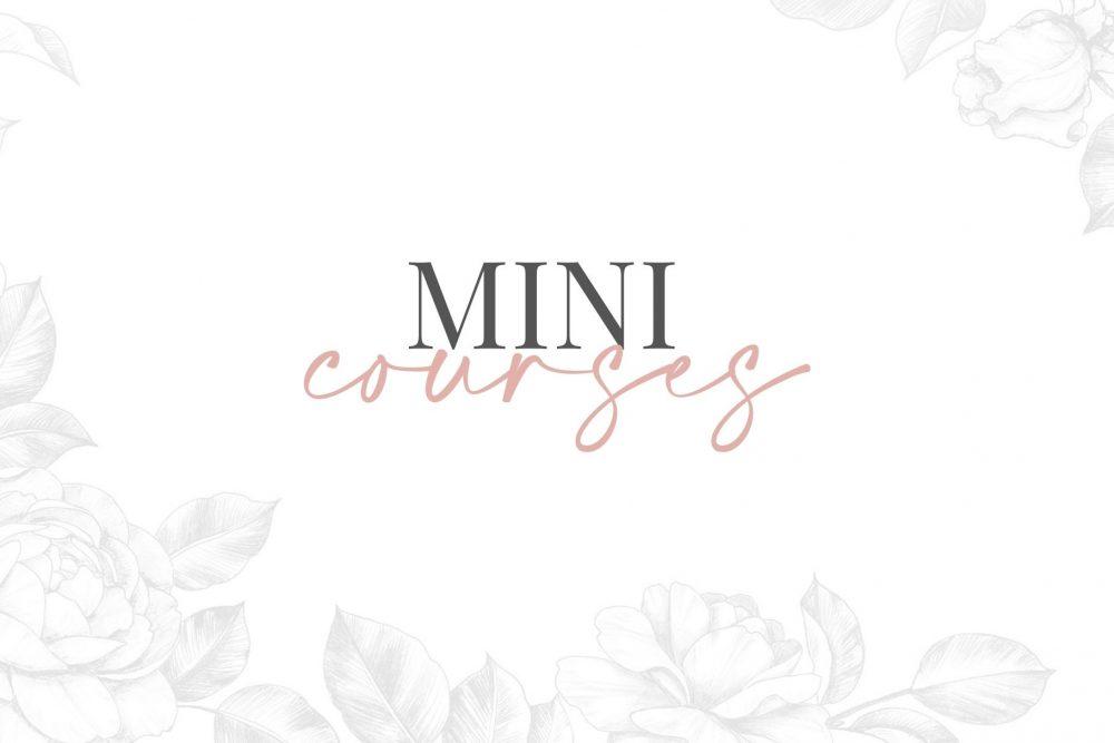 Mini Courses